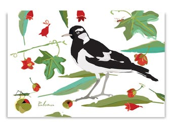 Three Pee Wee  Magpie Lark  Blank Cards FREE Shipping Australia Wide
