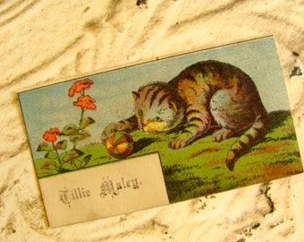 One Rare Antique Cat Lithograph Trading Calling Card