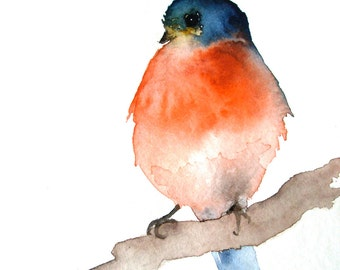 Tiny Bird Fine Art Print Orange and Blue Bird
