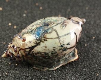 Lampworked Glass Blue Irradised Mottled Brown Swirl Blown Sea Shell