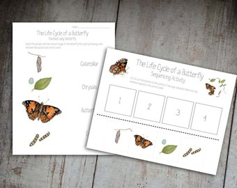 Life Cycle of a Butterfly Sequencing Activity and Matching Worksheet
