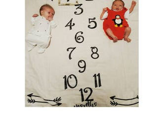 Twin Monthly Baby Blanket, Twin Baby Gift, Twin Babies, Monthly Blanket