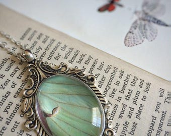 Real Luna Moth Wing Necklace // Art Nouveau Necklace // Real Butterfly Jewelry // LARP Jewelry