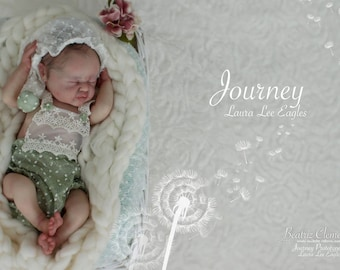 Beautiful * SOLD OUT *  Limited Edition Doll Kit   * Journey *  By Laura Lee Eagles comes with COA and Torso