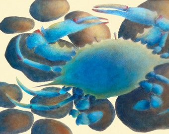"""GICLEE PRINT OF """"Blue Crab on the Rocks"""""""