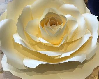 Large paper flower/Paper flowers