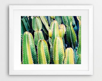 Cactus Print, Desert Photo Wall Art, Western Decor, Green Plant, Arizona Desert Photography, Botanical Wall Art, Printable Instant Download