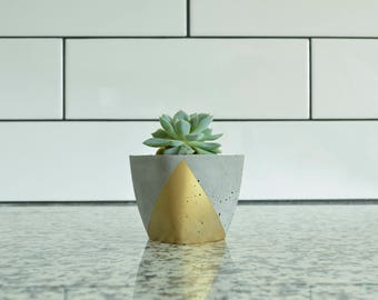 Concrete Succulent Planter, Small, Concrete and Gold, Modern & Trendy