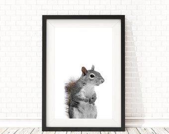 Squirrel print, Woodland Animals nursery art, Squirrel wall art, Squirrel poster, PRINTABLE nursery wall art, Woodland animals, Animal print