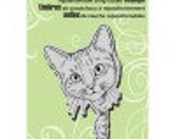 Cat Stamp, Stampendous, Feline Curious, Rubber Stamp, Card Making, Paper Craft, Animal Stamp