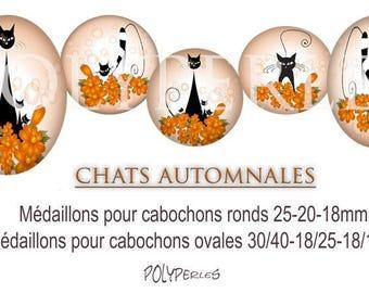 Medallions collages digitals cabochons * cat autumn *.