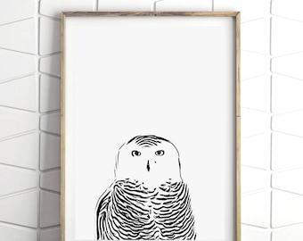 Owl Wall Art, Minimalist Bird Print, Minimalist Baby Room Decor, Minimalist Room Art, Minimalist Owl Decor, Minimalist Illustration