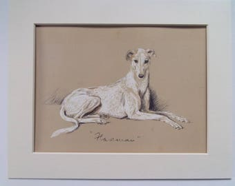 "Greyhound dog print by Lucy Dawson dated 1935 in 10""x8"" mount ready to frame"