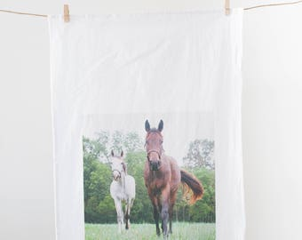 """Brown and White Horse in Pasture Photograph on Flour Sack Towel """"Foals"""" /Kitchen Towel / Equestrian Kitchen/ Horse Gift / Horse Lover"""