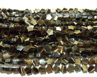6mm Pentagram Shell Natural Brown Beads 15 inches length, 38 cm-