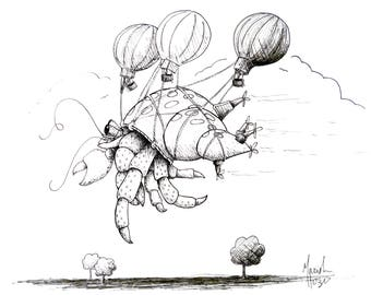 Flying Hermit Crab Illustration