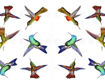 Hummingbird Water Slide Decals, Hummingbird Wedding And Party Decals,  Decorate Flame Less