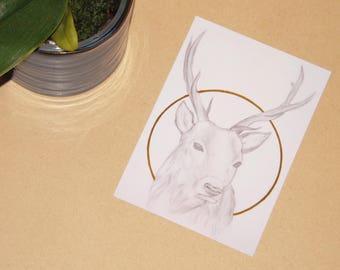 Golden Deer - ART PRINT