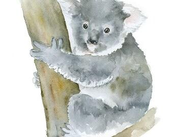 Koala Watercolor Painting - 8 x 10 / 8.5 x 11 - Giclee Print Australian Animal Art
