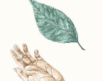 Hand Leaf Vein - Printable Poster