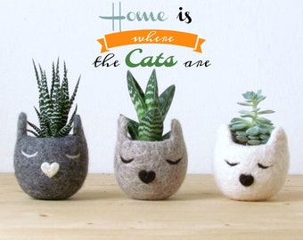 Cat planter set | Succulent planter, rustic home decor, new home, cat lover gift for her, cat lady, coworker gift for mom, cubicle decor