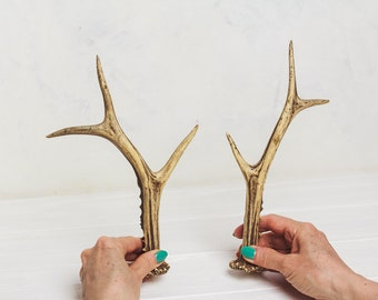 Natural deer antler horns Pair Two real animal horns decor Vintage taxidermy Raw Reindeer Roe antlers horns Material for home decor