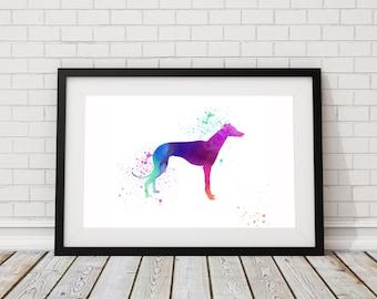 Greyhound Watercolor Print - Dog Print - Watercolor Art - Dog Wall Art - Animal Art Print- Watercolor Greyhound Painting - Dog Lover Gift