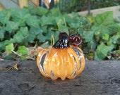 Creamy Orange Mini Pumpki...