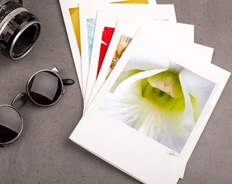 """Photo Note Card Set - 5""""x7"""" - Blooms. Nature photography, botanical, flowers, white orchid, yellow rose, dandelion, red daisy."""
