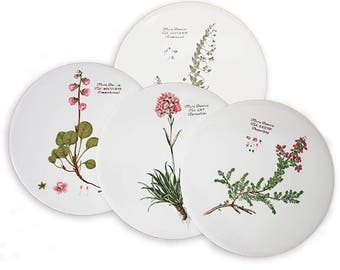 Set of 4 ceramic discs. Flora Danica by H & R Johnson Ltd.