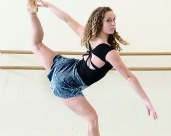 Velvet Ballet Skirt