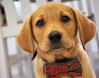 Dog Bow Tie, Orange and Green Plaid Harris Tweed Bow Tie, Detachable Bow tie, Orange  Bow Tie, Plaid Bow tie