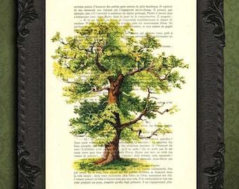 Oak tree print tree of life illustration family tree print beautiful wedding gift