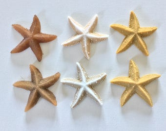 Lot of 6  Realistic Starfish Soaps - Beach, Soap, Nautical, Beach Wedding, Wedding Favors, Beach Theme, Guest Soap, Starfish, Custom Orders