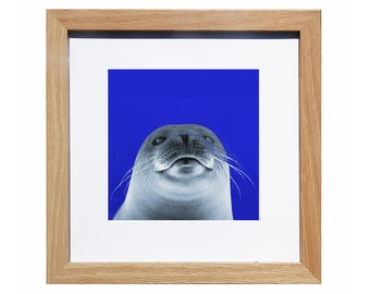 Seal, Printable, Print, Nursery Decor,Baby seal, Decorating, Nursery ideas, Decor, Digital download, Photograph,arctic, antarctic