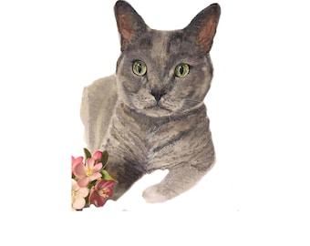 Custom pet portrait | cat portrait | dog portrait