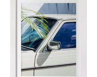 Tropical Print, Classic Car in San Jose, Costa Rica Art, Tropical Photography, Summer Art, Costa Rica Photography, Large Wall Art, Palm Tree