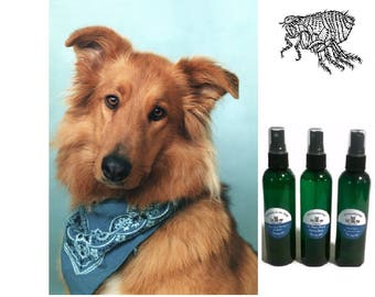 100% Natural DOG FLEA COLLAR Bandana w/ 5 oz Safe Spray Organic Ingredients! Essential Oils Insect Repels Insects  Collar No Chemicals