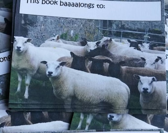 This book baaaalongs to: Sheep Bookplates - set of 12