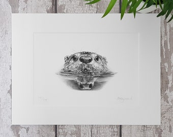 """SIGNED LIMITED EDITION Giclee print North American Otter Swimming Pencil Drawing 16"""" x 12"""""""