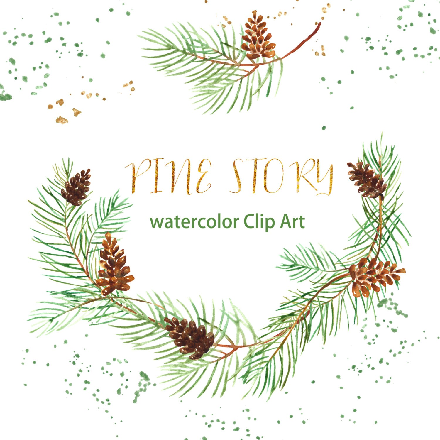 Pine Watercolor clip art hand drawn. Winter watercolor light