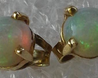 White opal stud earrings on 14k yellow gold