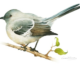 Mockingbird Painting - Watercolor Mockingbird - 5 by 7 print - Watercolor Painting, Archival Print, Home Decor, Nature Art