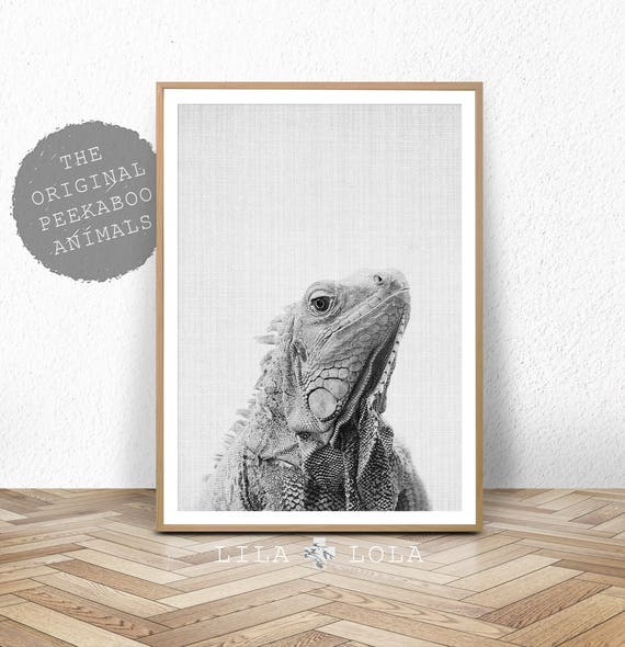 Iguana Wall Art Print, Digital Download, Printable Poster, Lizard, Reptile, Iguana Gifts, Boys Room Decor, Black and White, Kids Bedroom