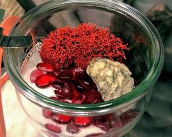 Red jam jar habitat