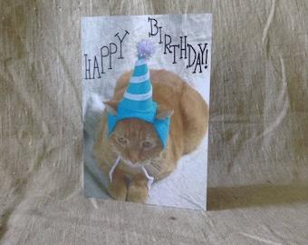 Cat Birthday Greeting Card