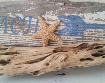 Beachy Pale Driftwood, Natural Driftwood, Driftwood Art, Driftwood***FREE SHIPPING***