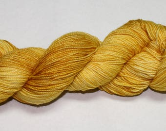 We Will Change the Future Hand Dyed Sock Yarn