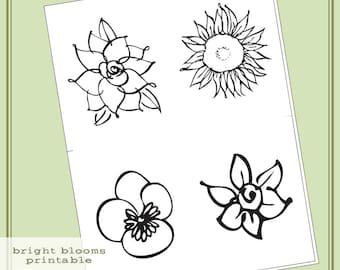 Instant Download Hero Arts Bright Blossoms Printable Digital Kit PT003