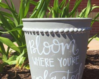 Bloom - Flower Pot